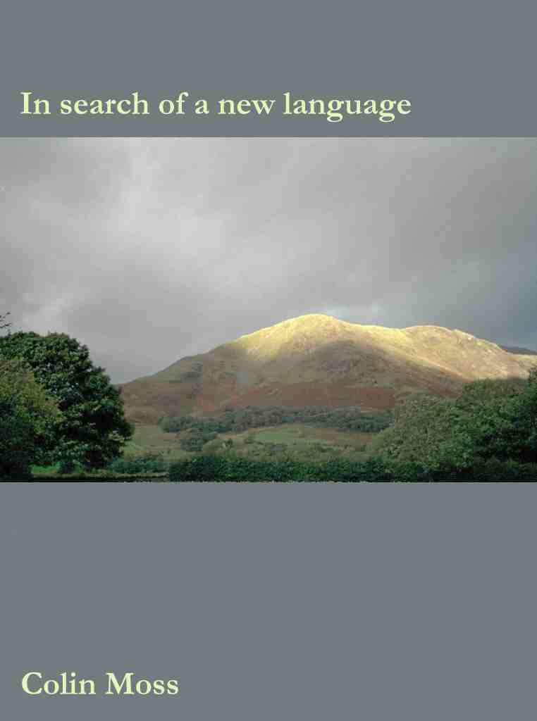 "Cover of ""In searchy of a new language"""